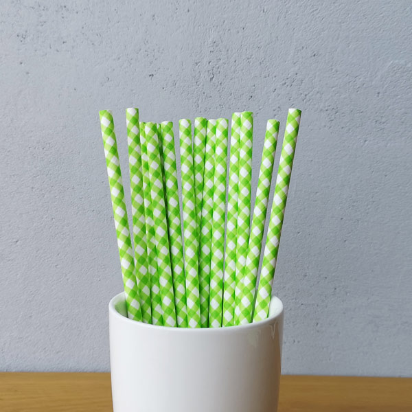 Green Checkered Drinking Paper Straws